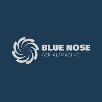Blue Nose Aerial Imaging